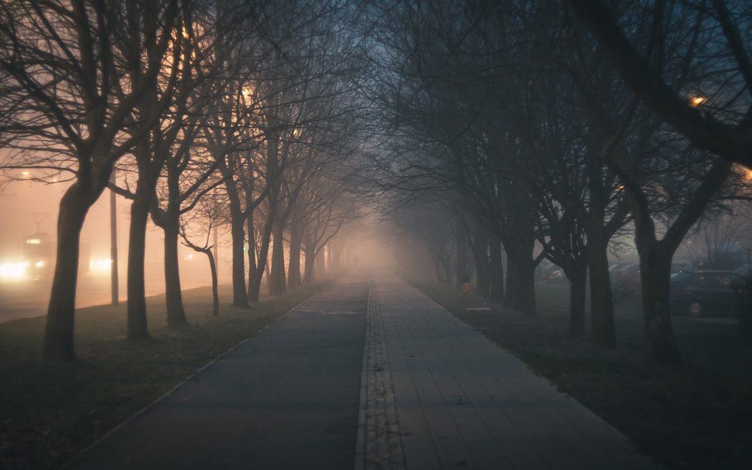 …über Abenteuer bei abendlichen Spaziergängen