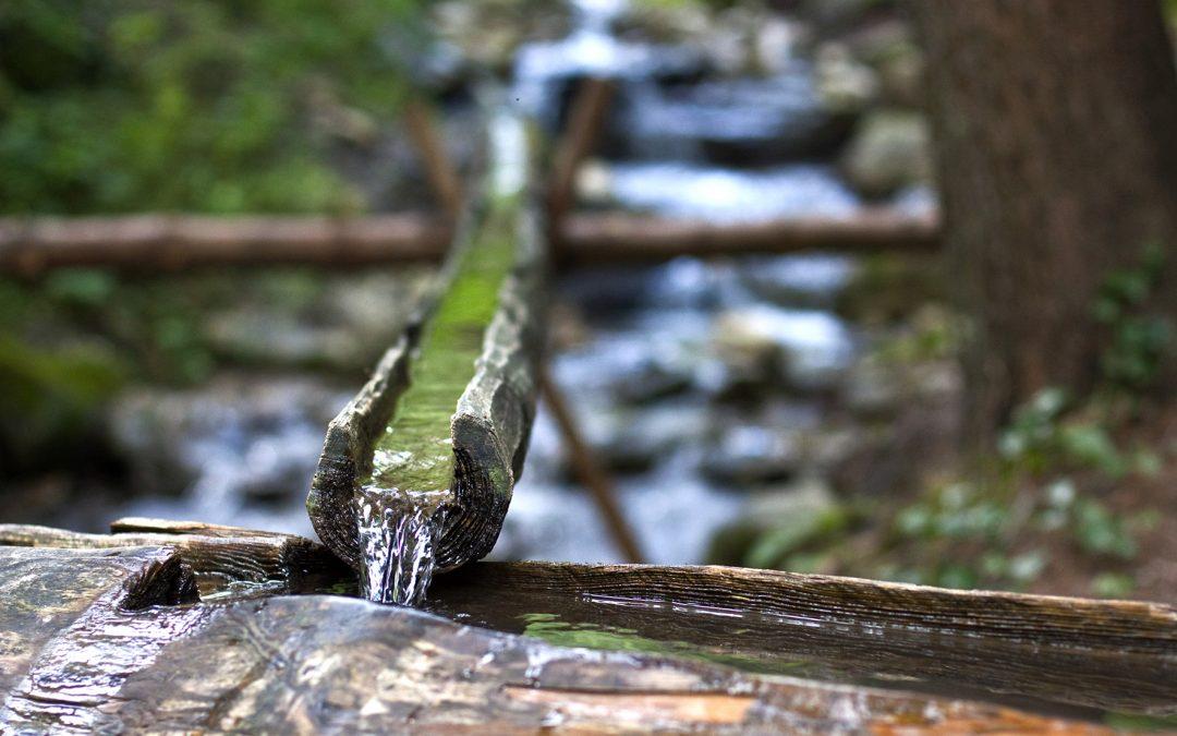 Der Weg am Wasser